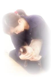 犬と猫の皮膚